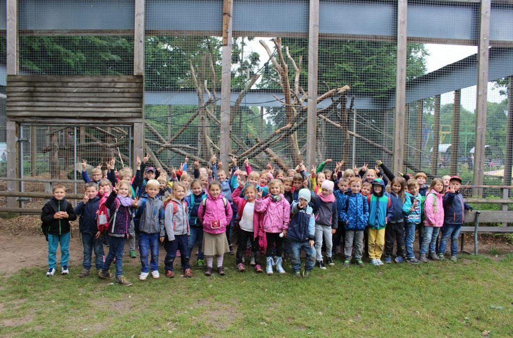 Ausflug zum Tierpark