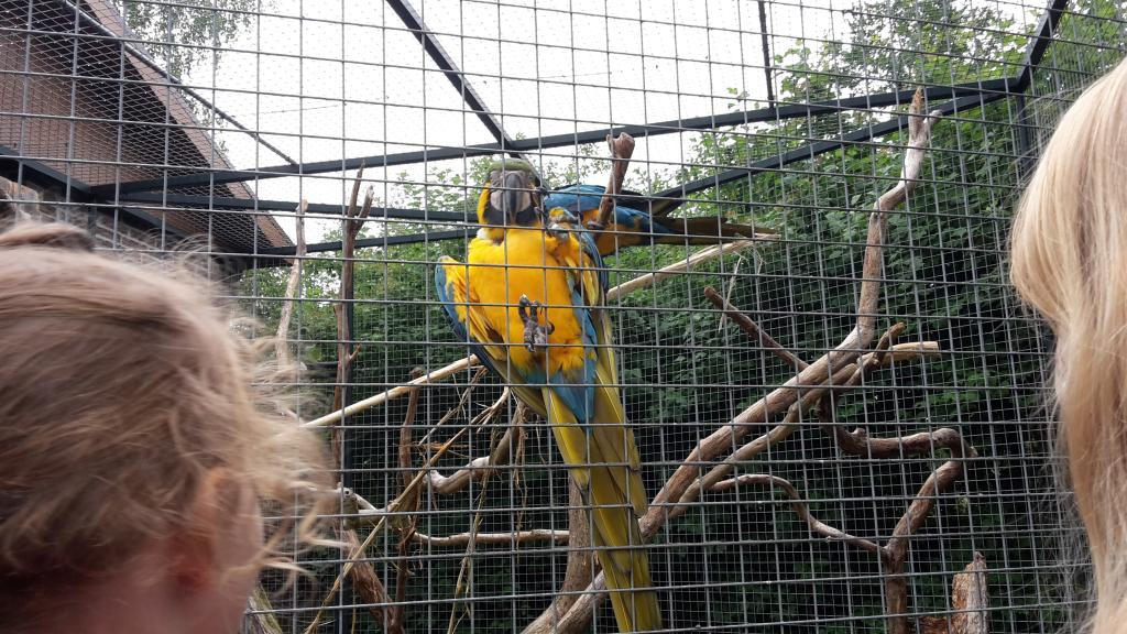 Tierpark Thüle