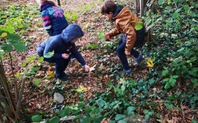 Waldbesuch der Erstklässler
