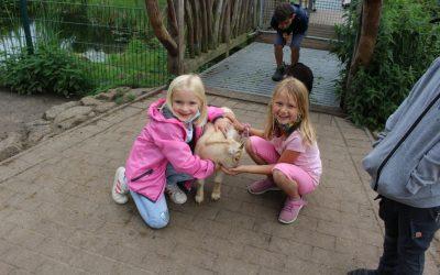 Ausflug in den Tierpark Thüle